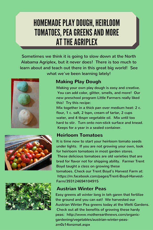 Homeade Play Dough, Heirloom Tomatoes, Pea Greens and more at the Agriplex